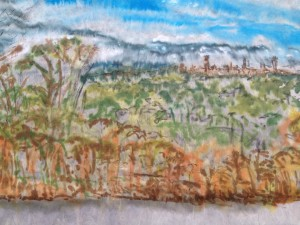 View from Caritas Christi ink on rice paper